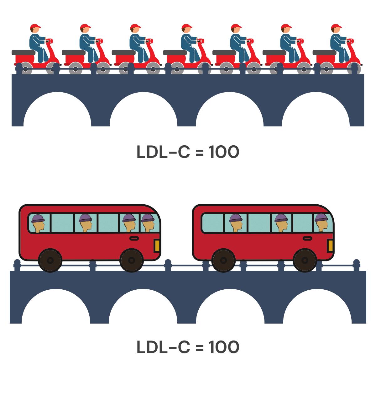 LDL Comparison